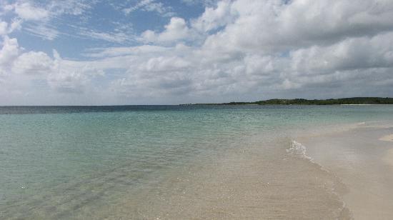 Playa cofi