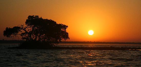 Everglades Area Tours: sunrise over the Chokoloskee bay