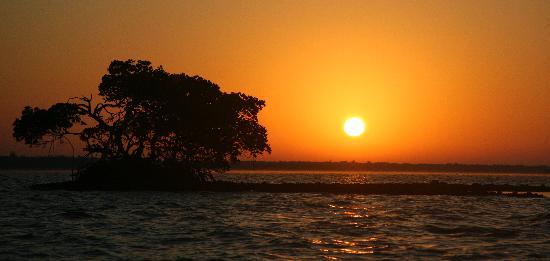 Everglades Area Tours : sunrise over the Chokoloskee bay