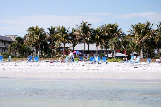 Sanibel Island Beach Resort: Good shell to throw back