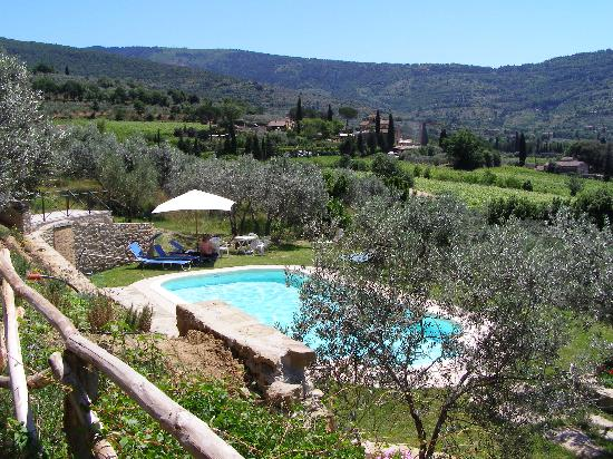 Margherita Holiday Home: Cortona and of course the pool