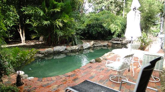 Lilybank Bed & Breakfast: pool is ok but step around the clutter & poop