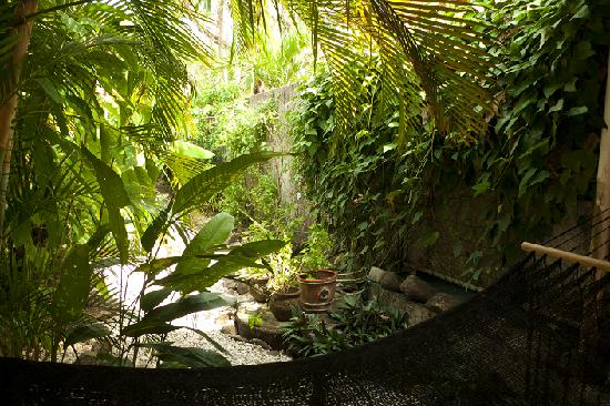 The gardens at Casa Coba