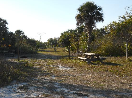 Cayo Costa State Park: Tent camper area