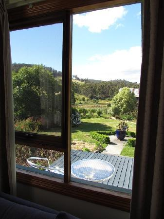 Hamlet Downs Country Accommodation: View outside The window of the grounds