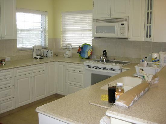 Northern Lights Condos: kitchen