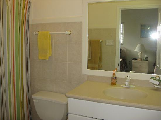 Northern Lights Condos: second ensuite