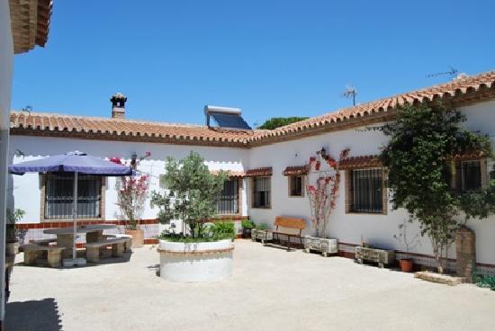 Huerta Montero : The Courtyard apartment