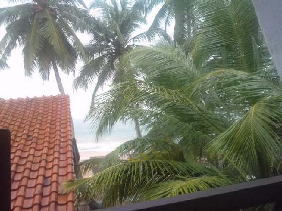 Hikkaduwa, Sri Lanka: view from the balcony
