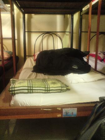 Dancing Elephant Hostel: My dorm bed