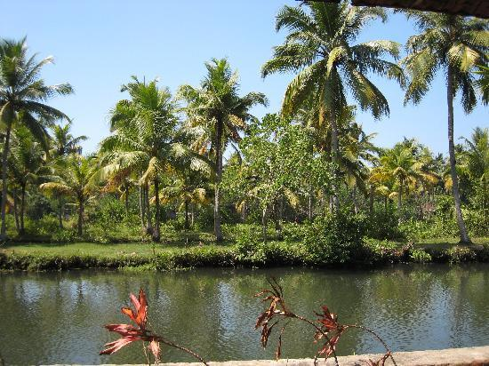 Coir Village Lake Resort: View from the verandah of our bungalow