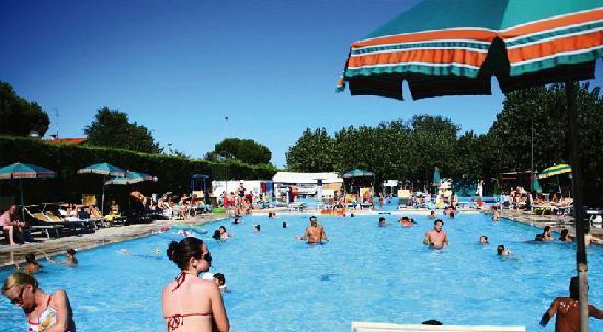Camping Classe Village : La piscina del Camping Classe