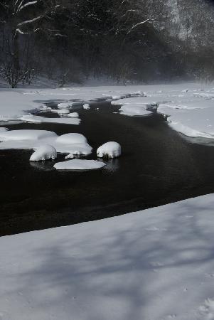 Kotoku Farm: 冬の光徳沼
