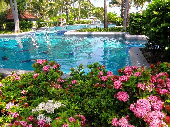Centara Grand Beach Resort Samui: Swimming pool