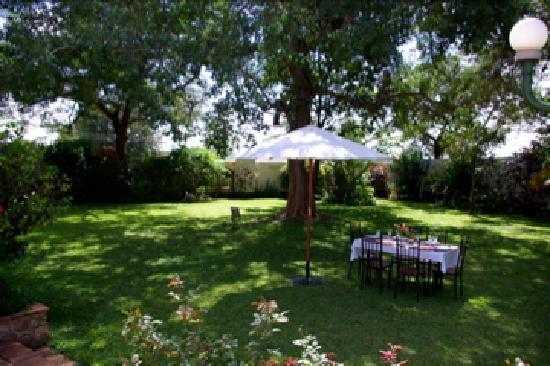 Established tranquil gardens at Burley House