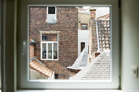 Villa Sablon: Roof of brussels