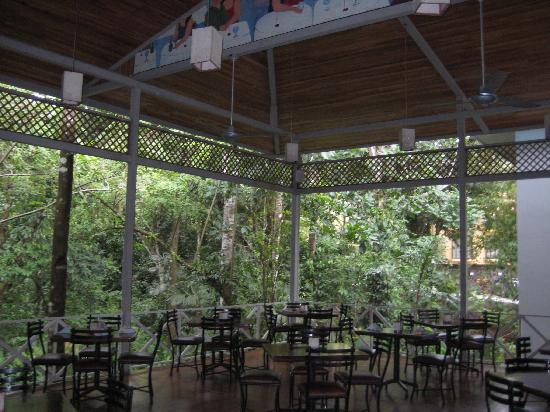 La Hacienda Restaurante: The indorr/outdoor seating is lovely and overlooks the lush rainforests in the area