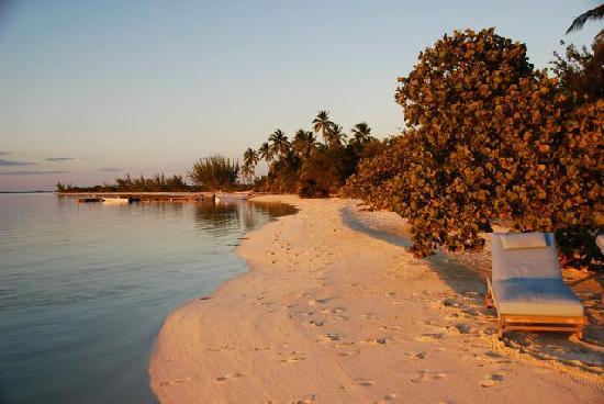 Tiamo Resort: Peaceful Bahamas morning