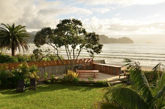 Beachfront Resort: The lawn at dawn