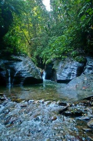 Nature Trekking: Beginning of Guanapo Gorge