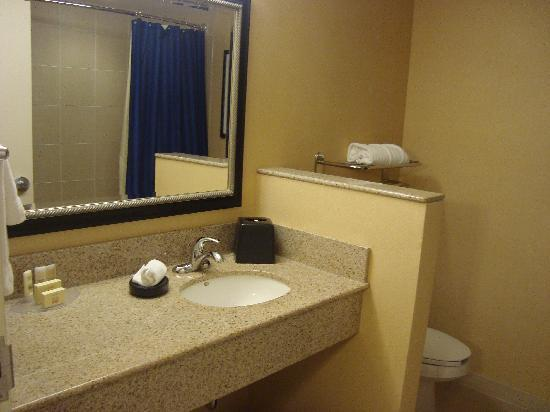 Courtyard Mississauga Airport Corporate Centre West: Bathroom