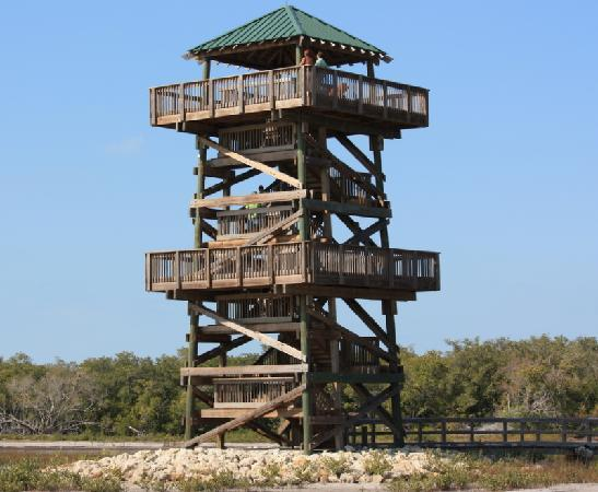 Robinson Nature Preserve : The Observation Tower at Robinson Preserve