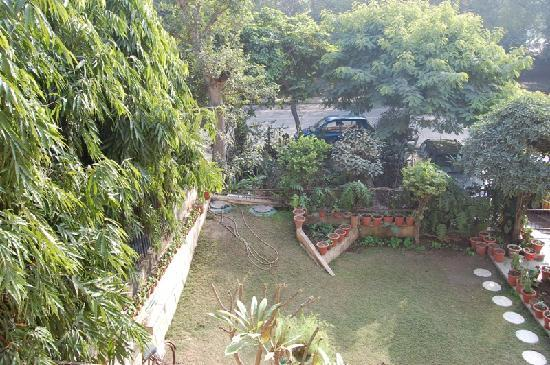 Jorbagh BnB: View from the Room Window