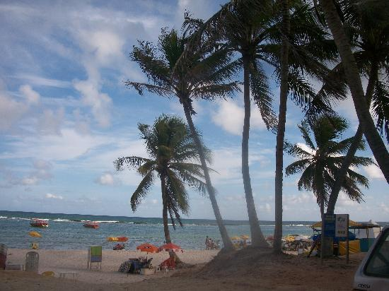 Maceio, AL: Praia do Frances