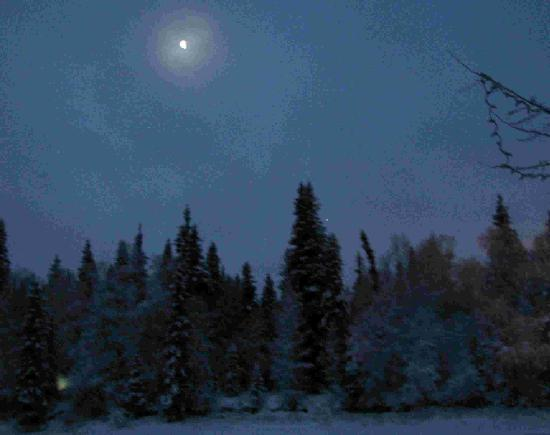 Riverbend Log Cabins & Cottage Rentals: Moon over the Chena River