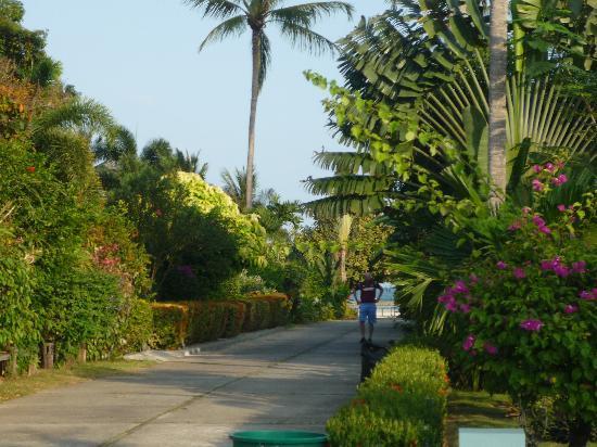 Shiva Samui: The private road to Bann Orchid
