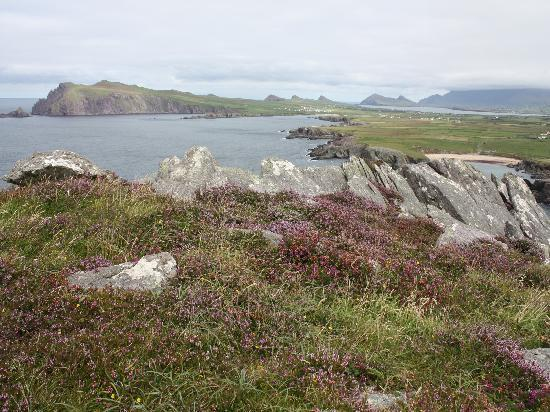 Old Ivy House: The three sisters depuis Clogher Head