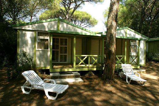 Cieloverde Camping Village: I nostri Bungalow