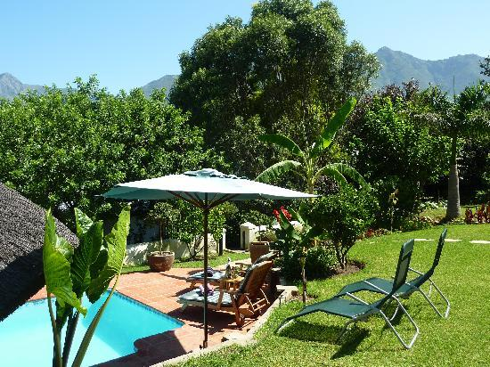 The Coachman Guest House: The pool, garden and view of the mountains