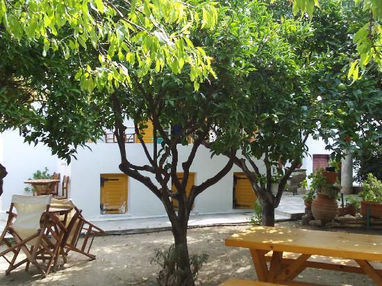 Hotel Aegean Village: lL'hôtel Agean Village