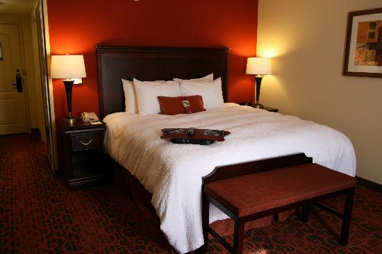 Hampton Inn Rochester Webster: Our King Size Standard Room