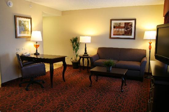 Hampton Inn Rochester Webster: Our King Studio Suite Living Area