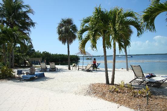 Hampton Inn Key Largo Beach Area