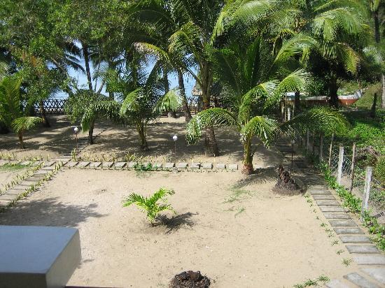 Fiesta Cove: Outside view from the room