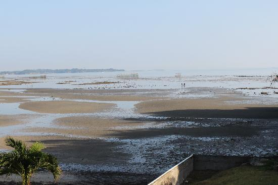 Escalante City, Philippinen: View of the beach at low tide