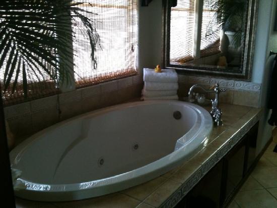 Cozy Rose Inn: Tub