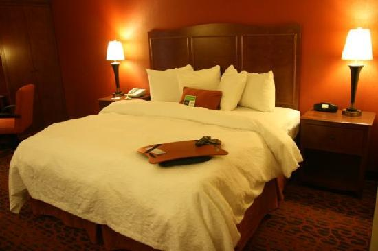 Hampton Inn Salt Lake City/Sandy : This is a picture of my room.  Nice big bed.