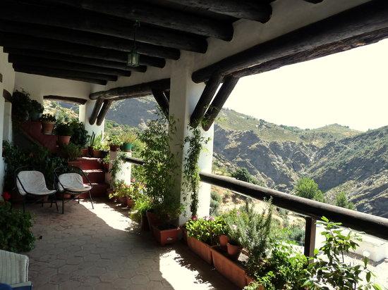 Casa Sonia : Terraza