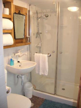 Batia and Claude B and B: The Green-room studio-bathroomand shower