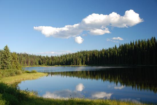Meadow lake fishing camp prices lodge reviews canada for Canadian fishing trips cheap