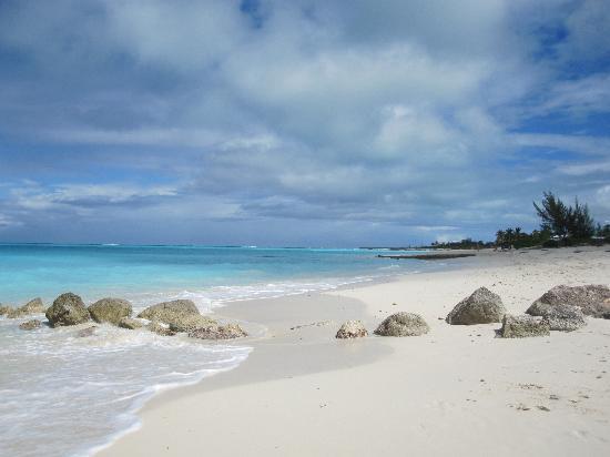 La Vista Azul Resort: Beach near the hotel