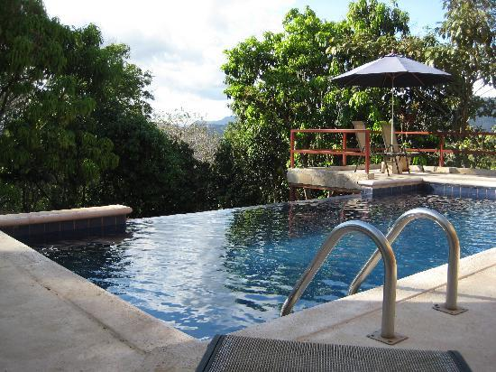Amatierra Retreat and Wellness Center: Gorgeous vistas from the pool