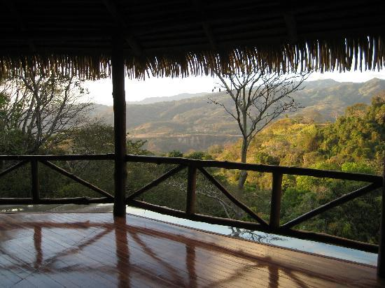 Amatierra Retreat and Wellness Center: Who wouldn't want to practice yoga out here?