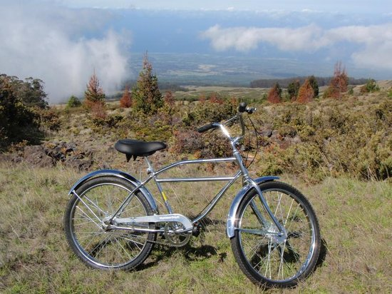 Maui Easy Riders : Maui Bike Tours by Easy Riders