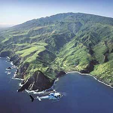 Maui Easy Riders : Ask about the helicopter ride and bike tour special.
