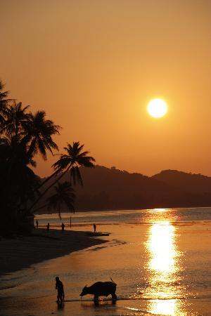 sunset Koh Samui Resort